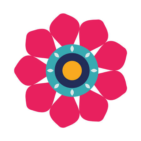 beautiful flower blue and pink decoration garden icon vector illustration design