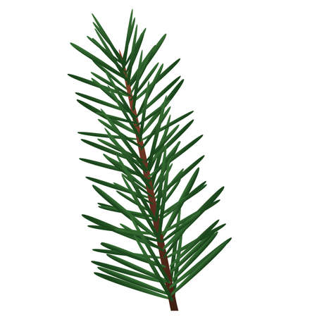 happy merry christmas fir leaf tree icon vector illustration design