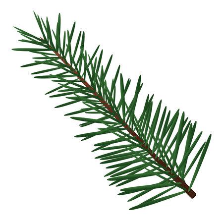 happy merry christmas fir leaf tree vector illustration design