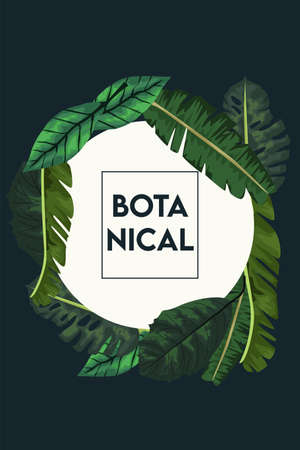 botanical lettering in poster with leafs in square frame vector illustration design
