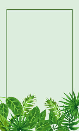 tropical frame decorative with green leafs and green background vector illustration design