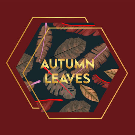 autumn leaves lettering in poster with dry leafs in hexagon frame vector illustration design