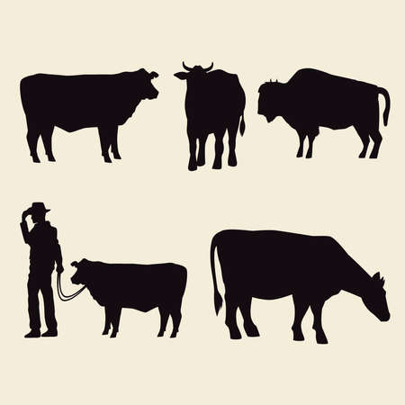 cows animals silhouettes and cowboy icons vector illustration design
