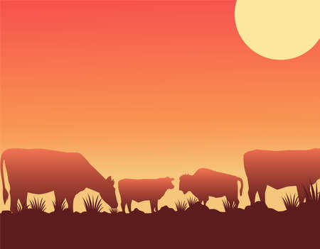 wild west sunset scene with cows in the camp vector illustration design Ilustrace