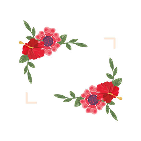 beautiful flowers and leafs red color in square frame vector illustration design