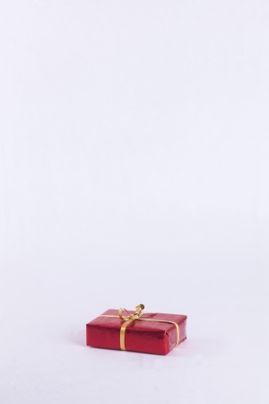 Wrapped red and gold christmas present on white background with copy space Stock Photo - 23989548