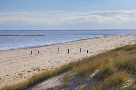 spurn: Spurn Point beach and grassy sand dunes with sea on sunny day, East Yorkshire, Great Britain
