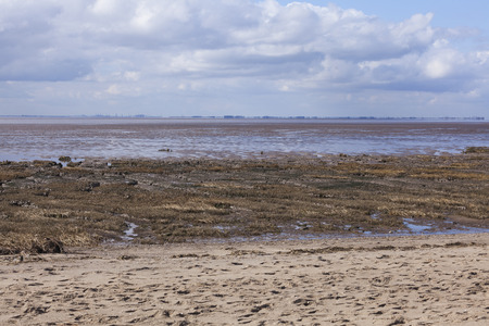spurn: Mud flats at low tide, Spurn Point Nature Reserve, Yorkshire, Great Britain
