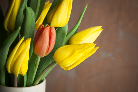 'odd one out': Single red tulip in vase of yellow tulips signifying diversity, indivuality and happiness