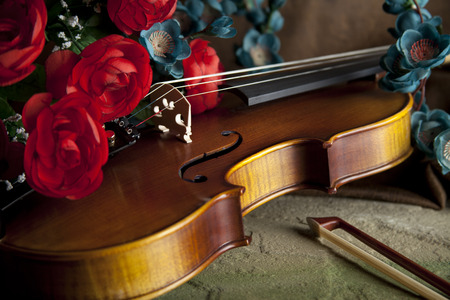 serenading: Violin with bow and flowers for concepts of music, love, romance and serenading
