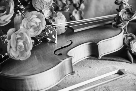 passions: Violin with bow and flowers for concepts of music, love, romance and serenading