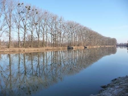 morava: Řeka Morava