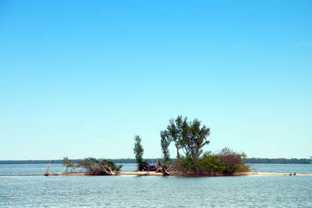 Small spoil island in Intercoastal Waterway of Florida Stock Photo