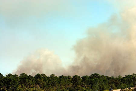 Smoke high in sky from Florida forest fire Stock Photo