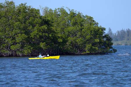 Yellow kayak with mangrove backdrop