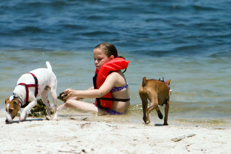 Family pets and little girl playing on the beach. Shallow DOF for copy space