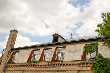 metal roof with skylights and chimney and Loft