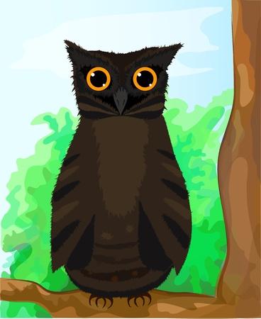 owlet: Divertido owlet caf� sentado en una rama