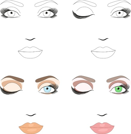 Samples of woman face scheme for makeup application  Set of classic day makeup patterns  Vector