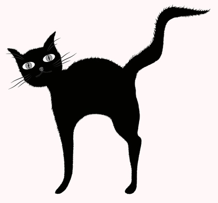 despondent: Funny big-eyed black cat with raised downy tail