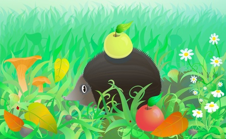 Funny hedgehog with apple in the forest among autumn grass, leaves and mushrooms Vector