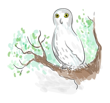 Amusing owl sitting on a branch of a tree