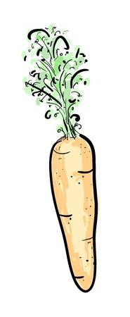 Colorful illustration of carrot Illustration