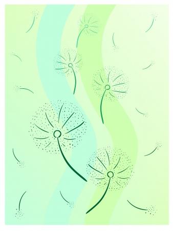 colorful vector illustration of grey dandelion