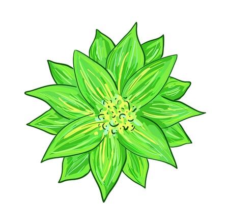 cretive: Eps 10 vector illustration of cretive green hatching flower