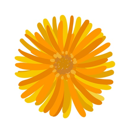 Colorful flower performed with variegated  Illustration
