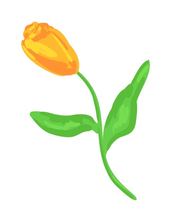 Yellow tulip  Eps 10 olorful vector sketch Stock Vector - 15518746