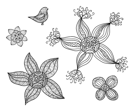 Collection of hand drawn doodles, black and white sketches Vector