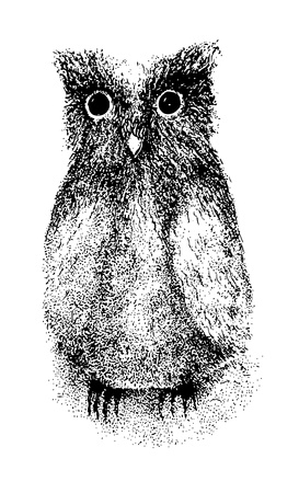 owlet: Ink pen drawing of an owlet. Illustration