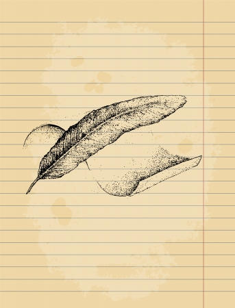 poetic: Feather and parchment drawing ink pen illustration on paper sheet