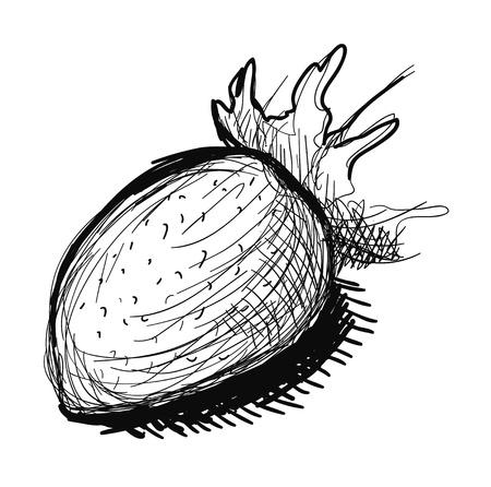 sappy: Black and white strawberry sketch