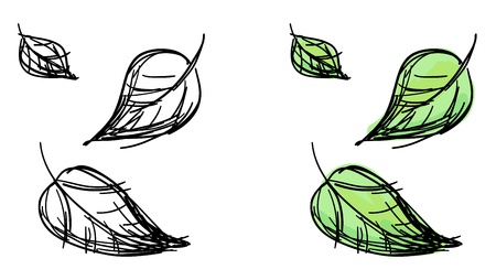 sketch of falling leaves  Black and white and colorful green variants