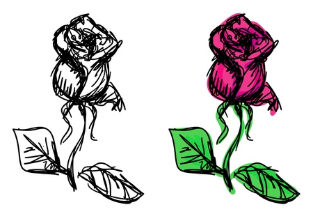 gravure: sketches of rose  Colorful and monochrome variants Illustration