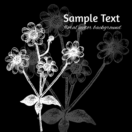 Black and white background with hand drawn flowers Vector