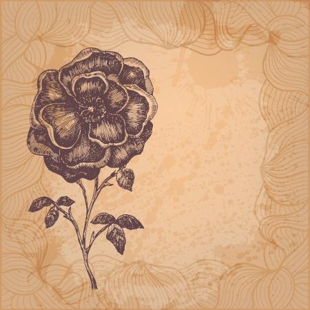 Beautiful flower vector illustration