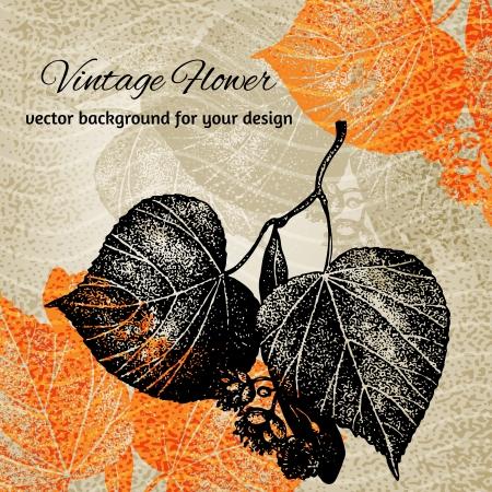 Colorful contrast stylized botanical vector illustration Illustration