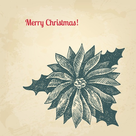winterberry: Vintage ink style Christmas card. Vector background for design Illustration
