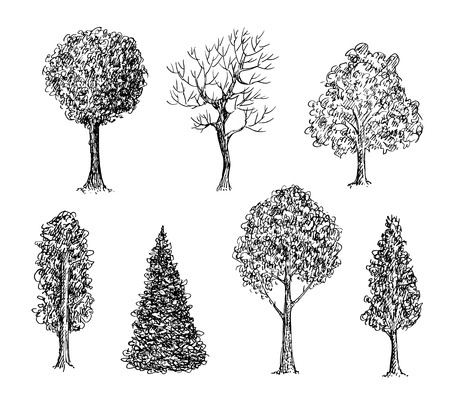 Set of ink hand drawn black and white trees. Vector illustration