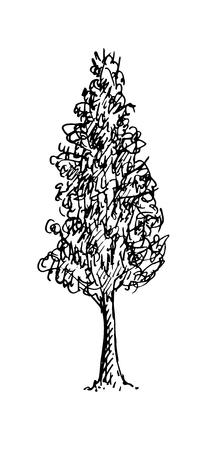 Croquis noir et blanc d'un arbre. Illustration vectorielle