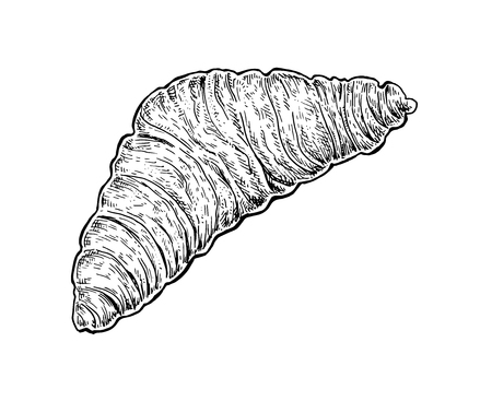 newly baked: Black and white hand drawn sketch of a croissant. Vector illustration
