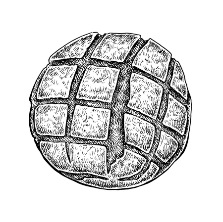 newly baked: Black and white hand drawn sketch of a bread bun. Vector illustration