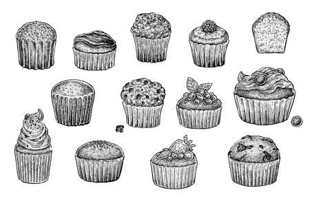Muffins collection. Set of hand drawn black and white sketchy illustrations of excellent quality and detalization. Raster format.