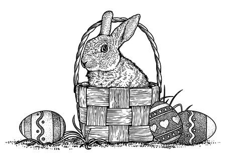 Lapin, lapin, panier, illustration pâques, dessin, gravure, l'art de la ligne