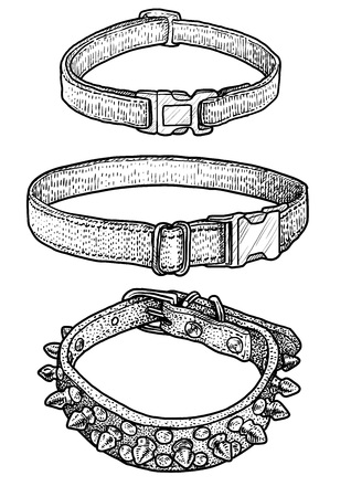 Dog, cat collar illustration, drawing, engraving, ink, line art, vector