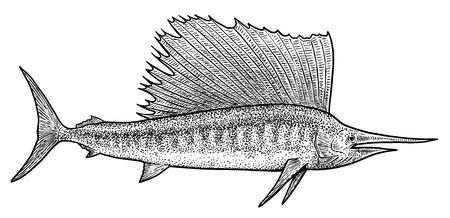 Swordfish illustration, drawing, engraving, ink, line art, vector