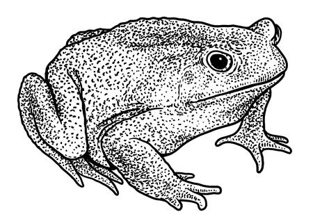 Dog toad illustration Stock Illustratie